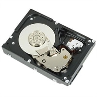Dell 7,200 RPM 序列 ATA 硬碟 6 Gbps 512e 3.5 吋 內接拔硬碟 - 10 TB
