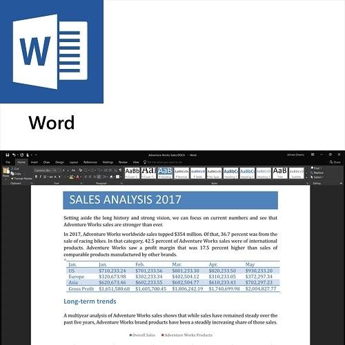microsoft word office student