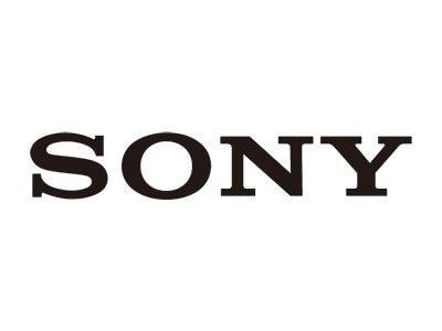 Sony Truly Wireless Noise-Canceling Headphones - WFSP800N/D