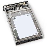 Dell 1TB 7.2K ot./min. SATA 2.5palcový Připojitelná Za Provozu Pevný disk, 13G