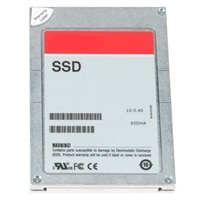 Dell 3.84TB SSD hodnota SAS Kombinované Použití 12Gb/s 512e 2.5palcový Jednotka v 3.5palcový Hybridní Nosic