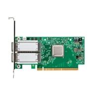 Mellanox ConnectX-5 EX Duálny port 100GbE QSFP28 PCIe Adaptér, Nízkoprofilový