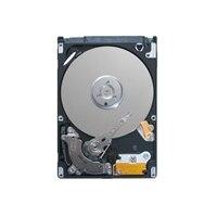 Dell Serial ATA-harddisk med 7200 omdr./min. - 500 GB