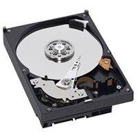 Dell 500GB 7.2K RPM SATA 512n 3.5ίντσες δίσκων