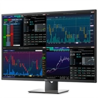 Dell 43 Ultra HD 4K Multi-Client Monitor | P4317Q