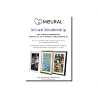 Meural Membership - Subscription card (1 year) - up to 2 digital photo frames