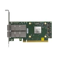 Mellanox ConnectX-6 DX Dual Port 100GbE QFSFP56  Network Adapter, Low Profile Customer Kit