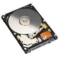 Disco duro móvil serial ATA de 500GB a 5400RPM para la Dell PowerVaultRD1000