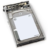 "Dell 1TB 7.2K RPM SATA 2.5"" De Conexión En Marcha Disco duro, 13G"