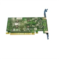 NVIDIA GeForce GT 730 - Instalación del cliente - tarjeta gráfica - GF GT 730 - 2 GB - 2 x DisplayPort - para OptiPlex 3060 (MT), 5060 (MT)