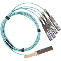 200Gbe QSFP28-DD a 2x100GbE QSFP28 cable óptico activo de (hasta 15 m) de Dell Networking, Breakout, No FEC