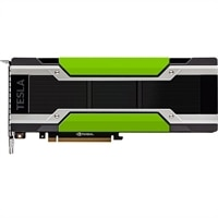 NVIDIA Tesla P40 24GB GPU, Passive