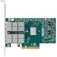 Dell ConnectX(R)-3 이중의포트 Infiniband 어댑터