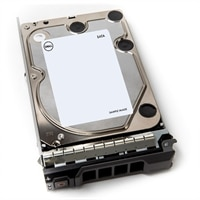 Dell 1TB 7.2K RPM SATA 6Gbps 3.5Pol. De Troca Dinâmica Unidade de disco rígido