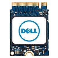 Dell M.2 PCIe NVME Gen 3x4 Class 35 2230 Unidade de estado sólido - 1TB