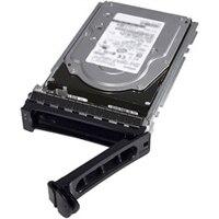Dell 12TB 7.2K ot./min. NLSAS 12Gb/s 512e 3.5palcový Připojitelná Za Provozu Jednotka
