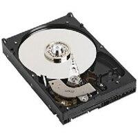 Dell 1TB 7.2K v/min SATA 512e 2.5tum Enhet