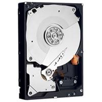 Dell SAS 12Gbps 4Kn 3.5 tum Kan Bytas Under drift-hårddisk med 7200 v/min – 10 TB