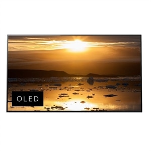 Sony 77 Inch OLED 4K Ultra HD HDR Smart TV - XBR77A1E